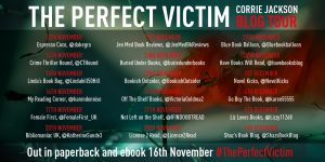 Blog Tour: #ThePerfectVictim
